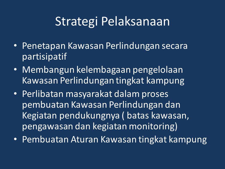 Strategi Pelaksanaan Penetapan Kawasan Perlindungan secara partisipatif. Membangun kelembagaan pengelolaan Kawasan Perlindungan tingkat kampung.