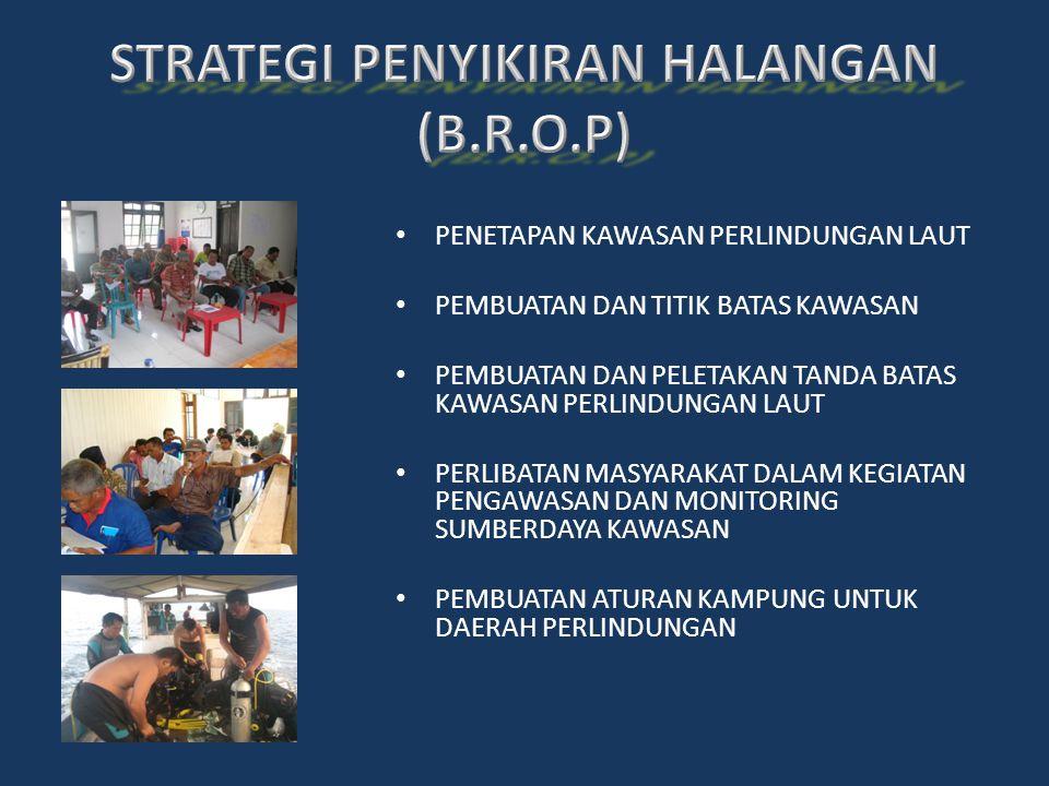 STRATEGI PENYIKIRAN HALANGAN (B.R.O.P)