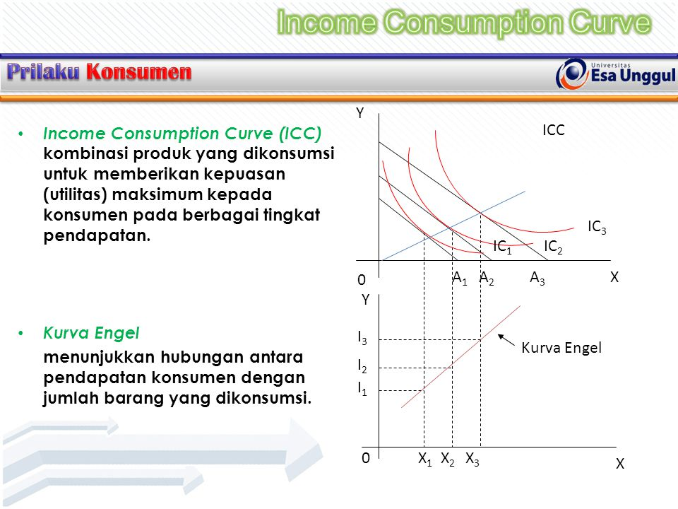 Income Consumption Curve