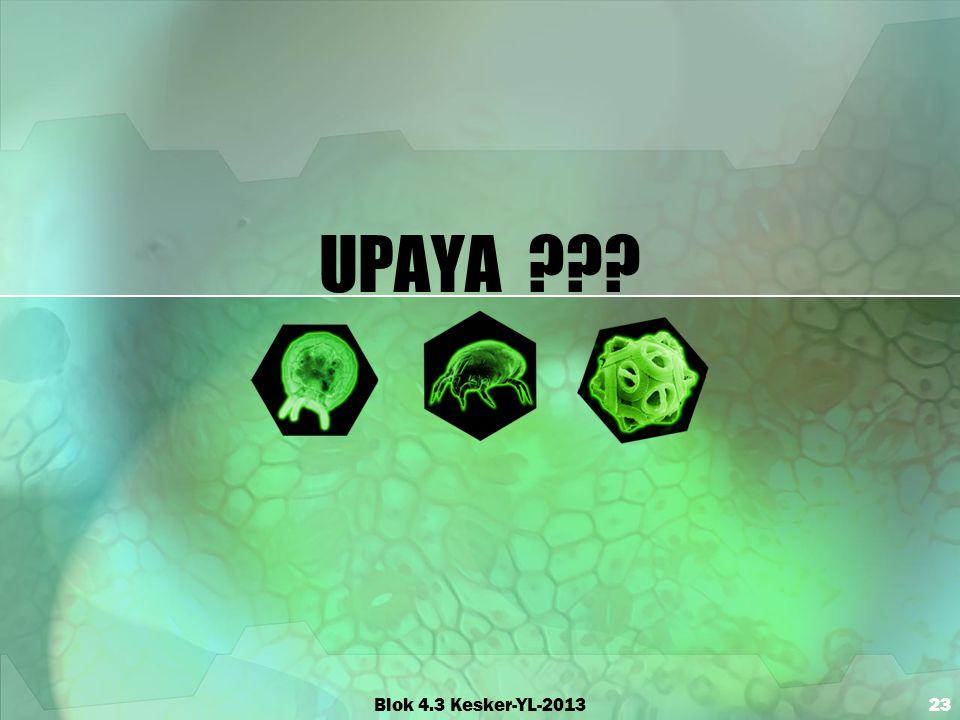 UPAYA Blok 4.3 Kesker-YL-2013