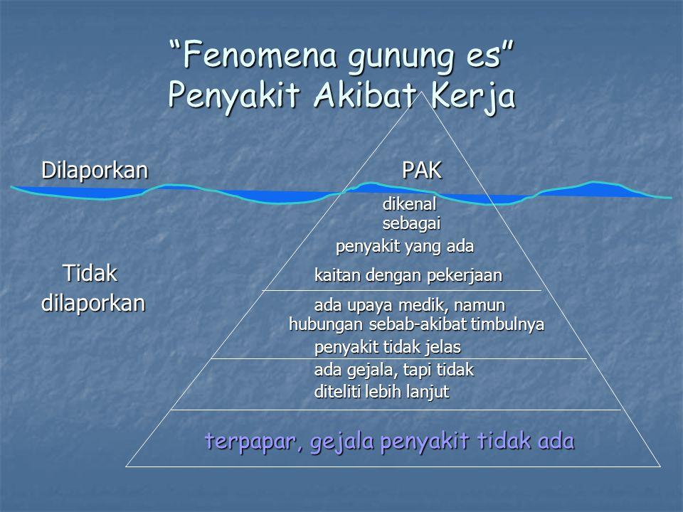 Fenomena gunung es Penyakit Akibat Kerja