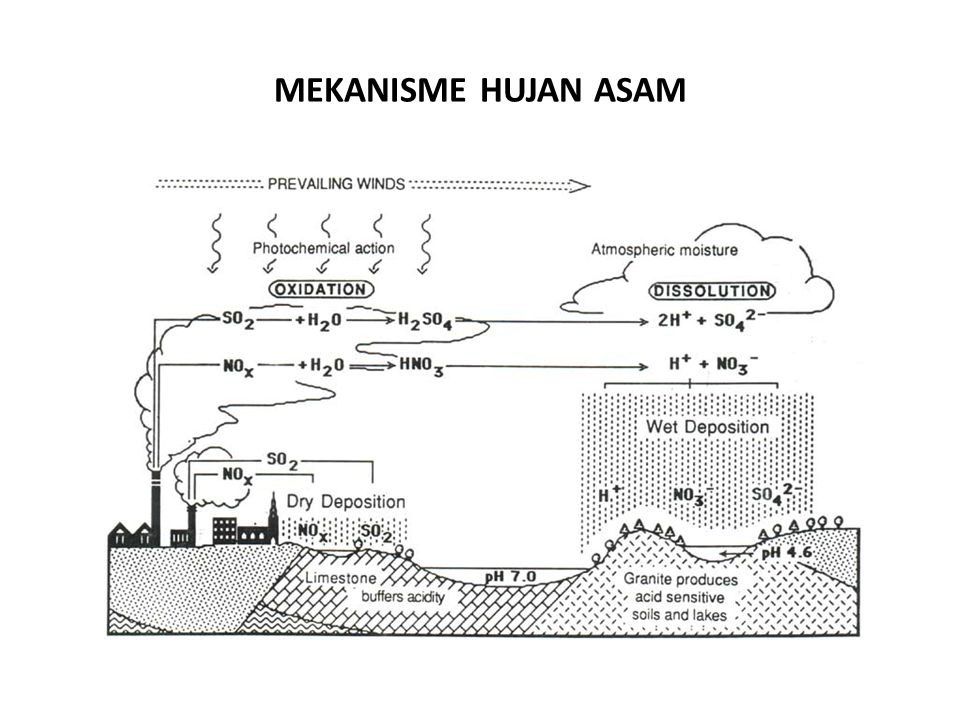 MEKANISME HUJAN ASAM