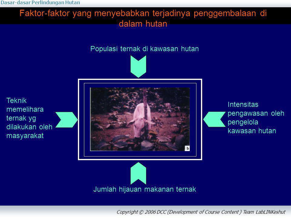 Faktor-faktor yang menyebabkan terjadinya penggembalaan di dalam hutan
