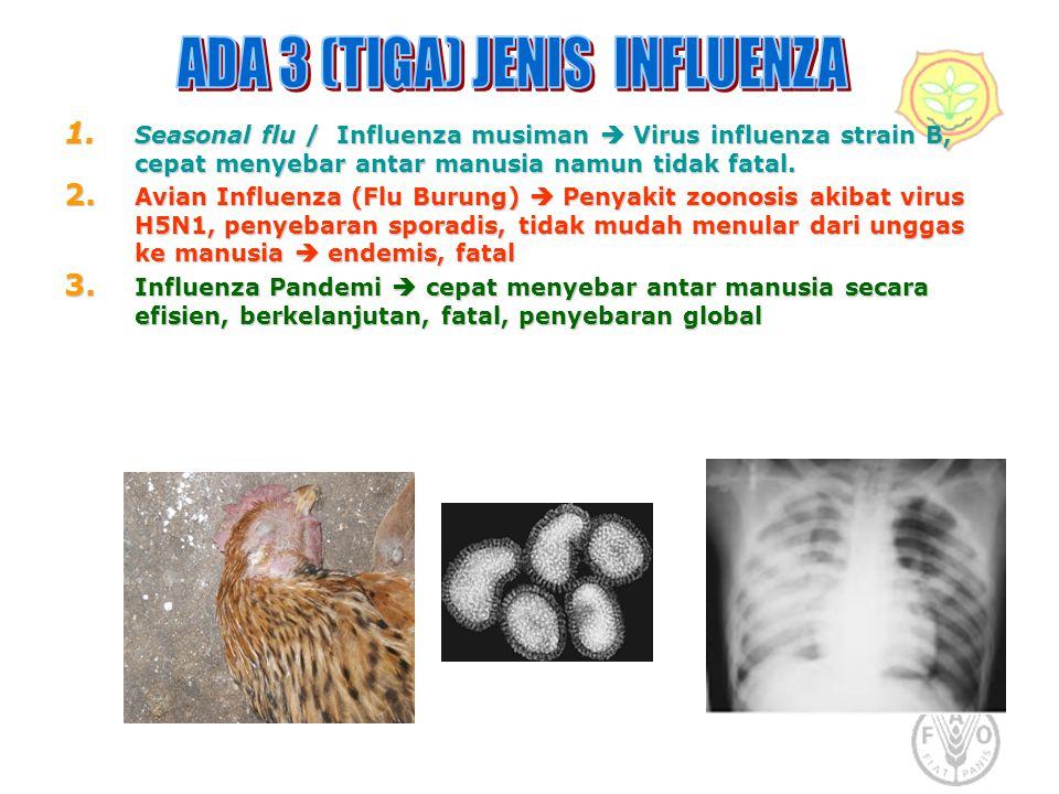 ADA 3 (TIGA) JENIS INFLUENZA