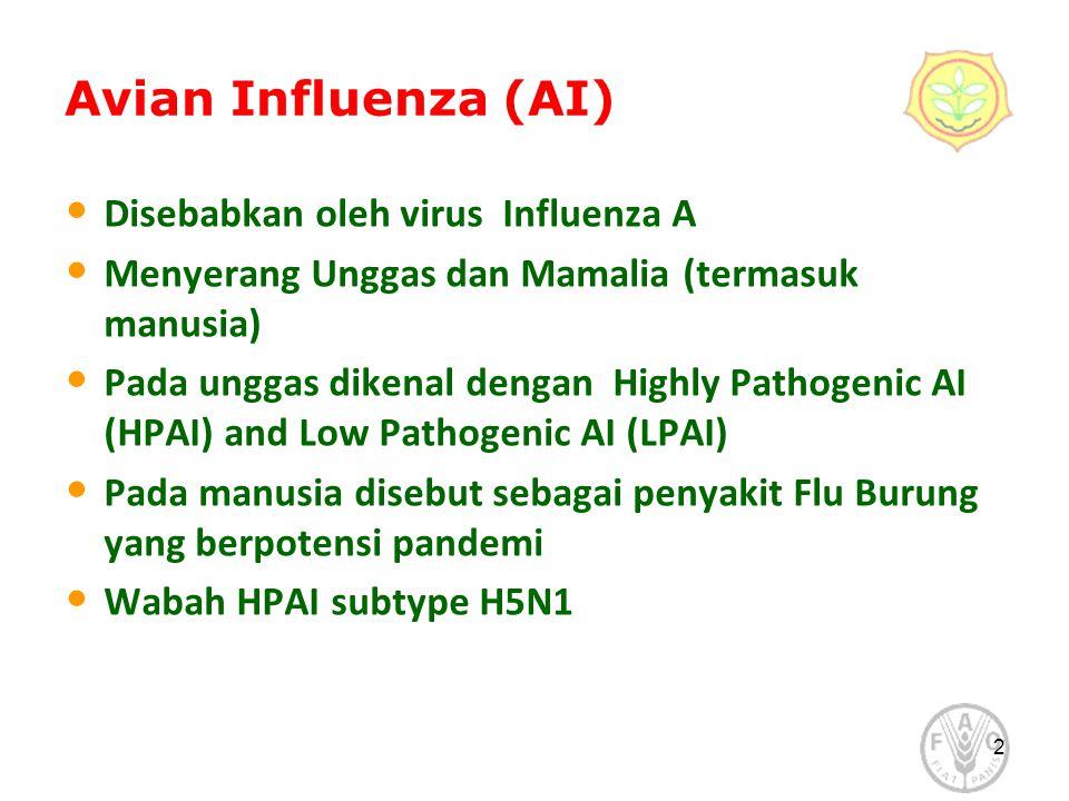 Avian Influenza (AI) Disebabkan oleh virus Influenza A