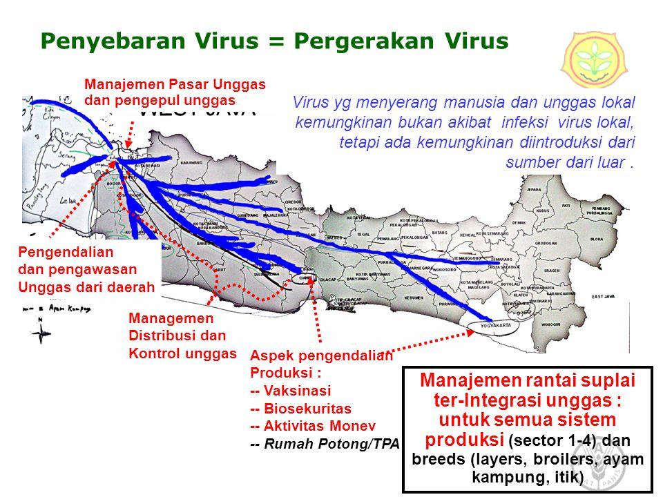 Penyebaran Virus = Pergerakan Virus
