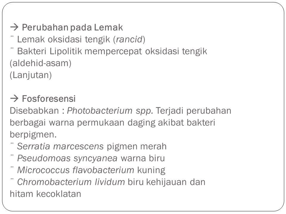  Perubahan pada Lemak ¨ Lemak oksidasi tengik (rancid) ¨ Bakteri Lipolitik mempercepat oksidasi tengik (aldehid-asam) (Lanjutan)  Fosforesensi Disebabkan : Photobacterium spp.