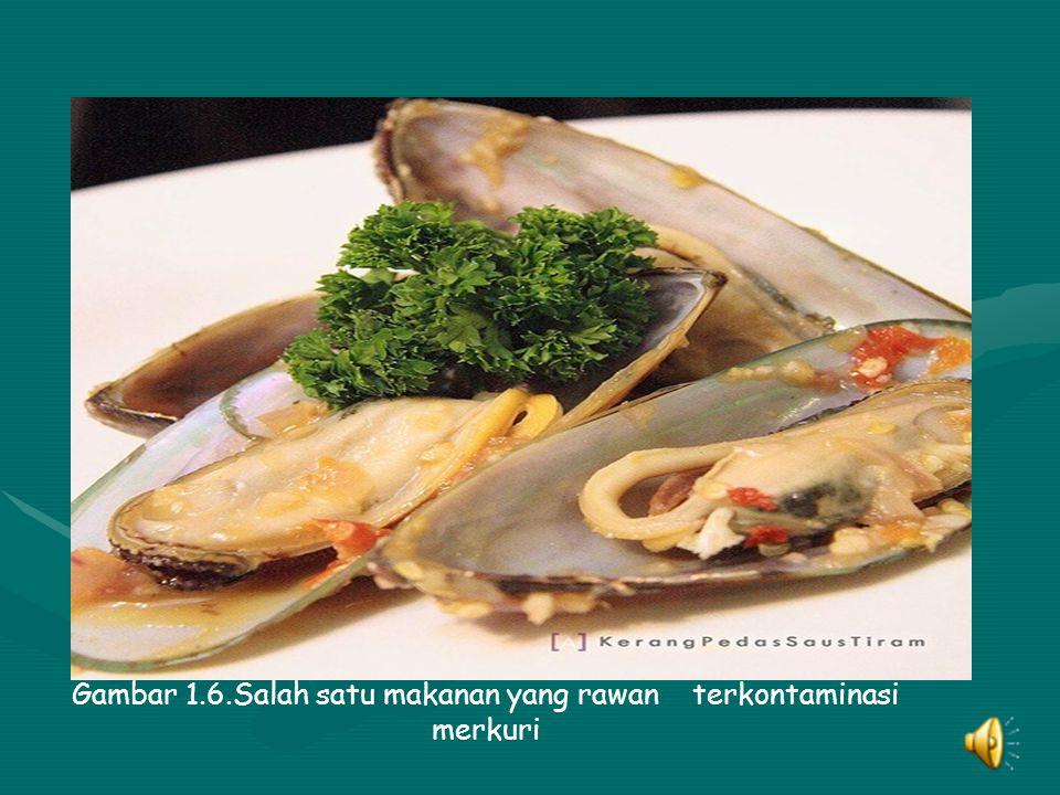 Gambar 1.6.Salah satu makanan yang rawan terkontaminasi merkuri