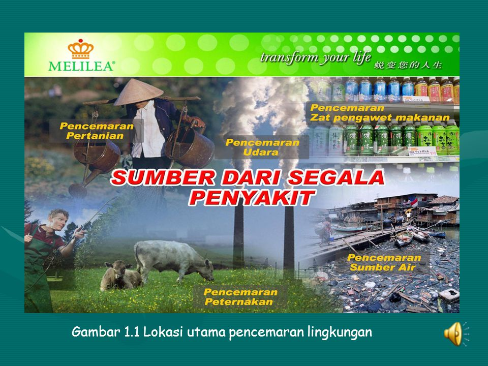 Gambar 1.1 Lokasi utama pencemaran lingkungan