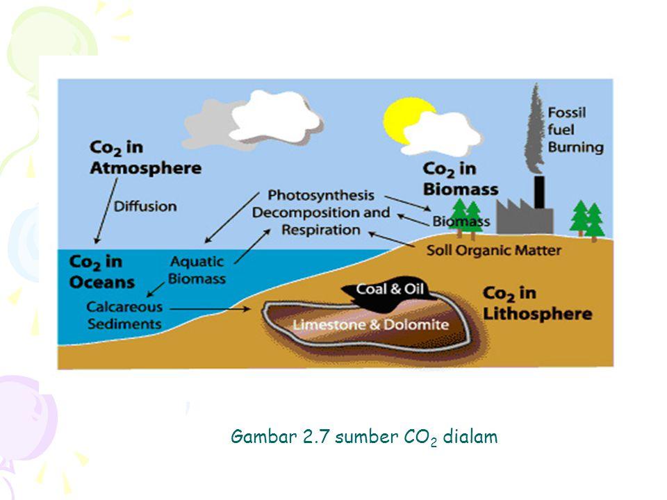 Gambar 2.7 sumber CO2 dialam