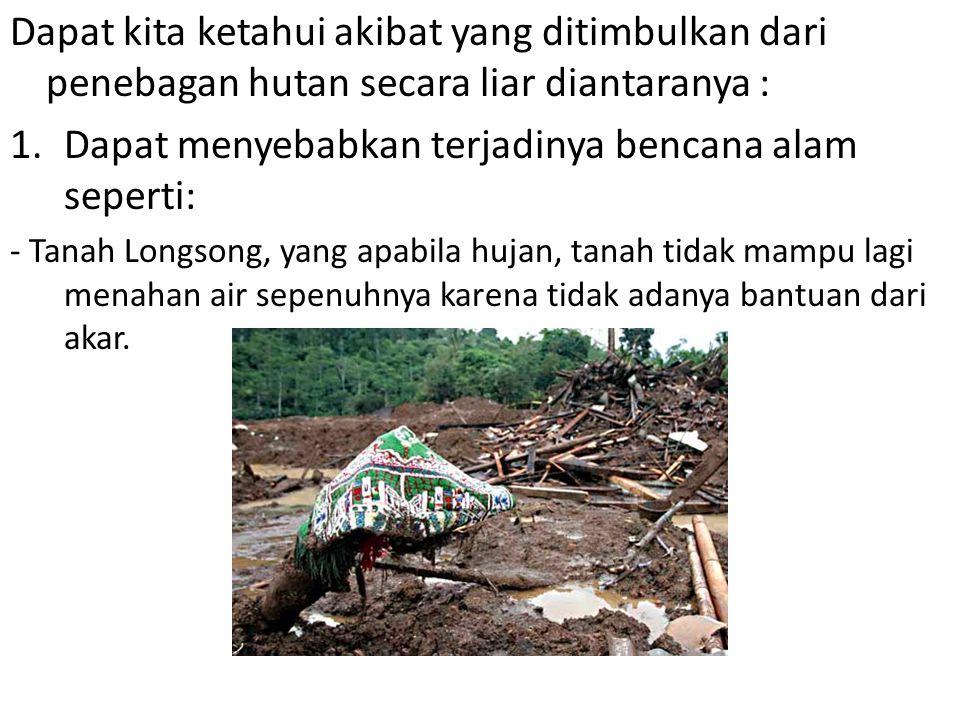 Dapat menyebabkan terjadinya bencana alam seperti: