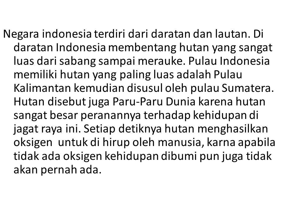 Negara indonesia terdiri dari daratan dan lautan