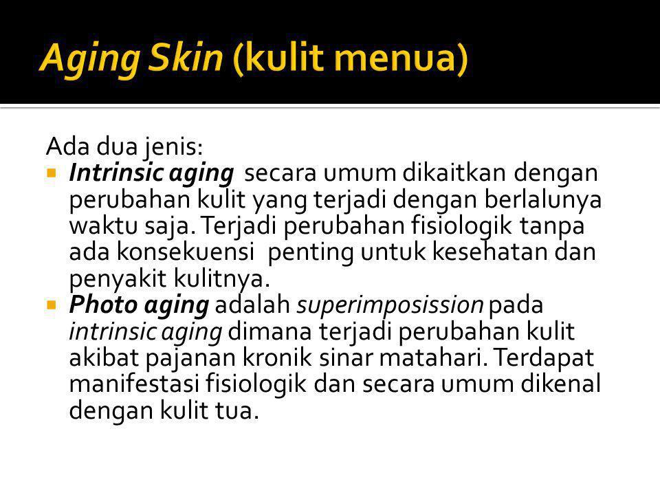 Aging Skin (kulit menua)