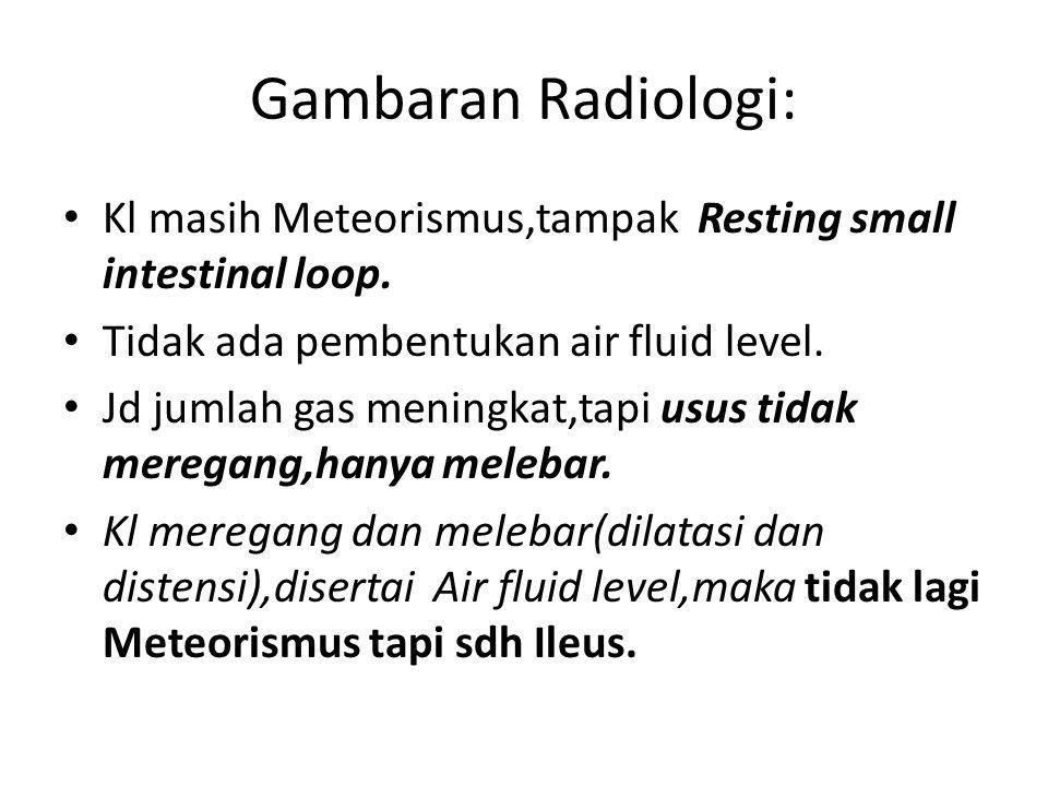 Gambaran Radiologi: Kl masih Meteorismus,tampak Resting small intestinal loop. Tidak ada pembentukan air fluid level.