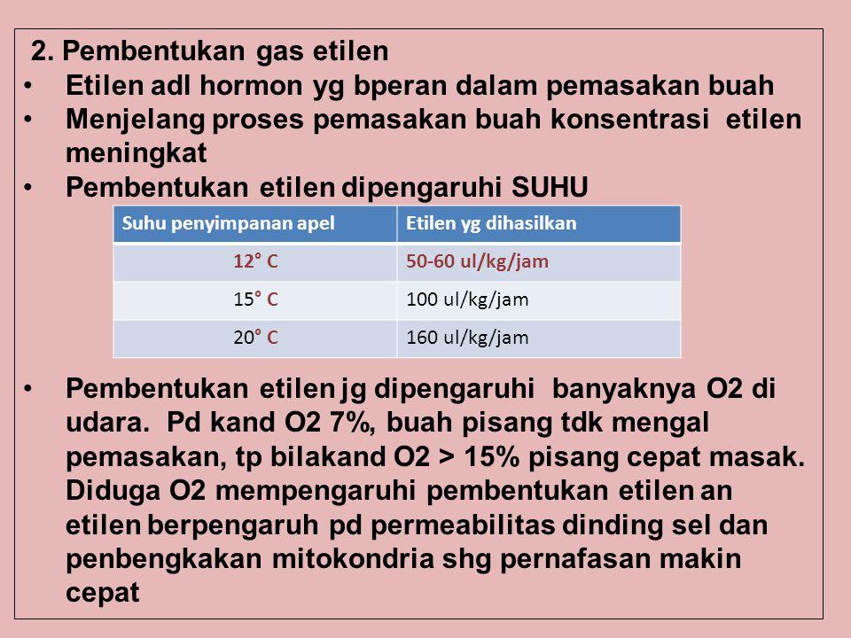 2. Pembentukan gas etilen
