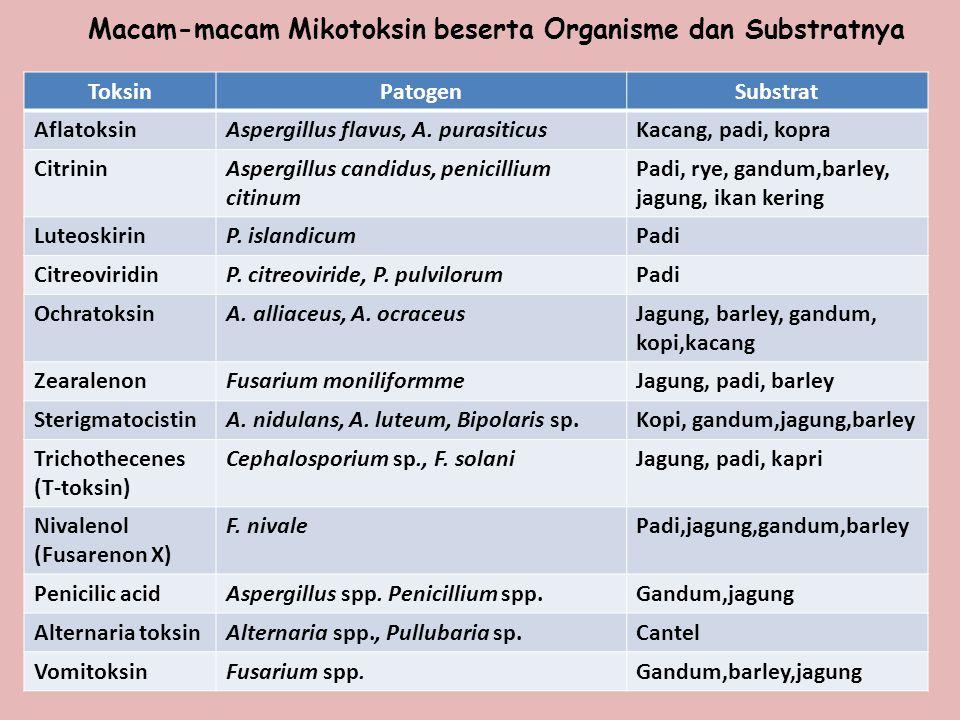 Macam-macam Mikotoksin beserta Organisme dan Substratnya