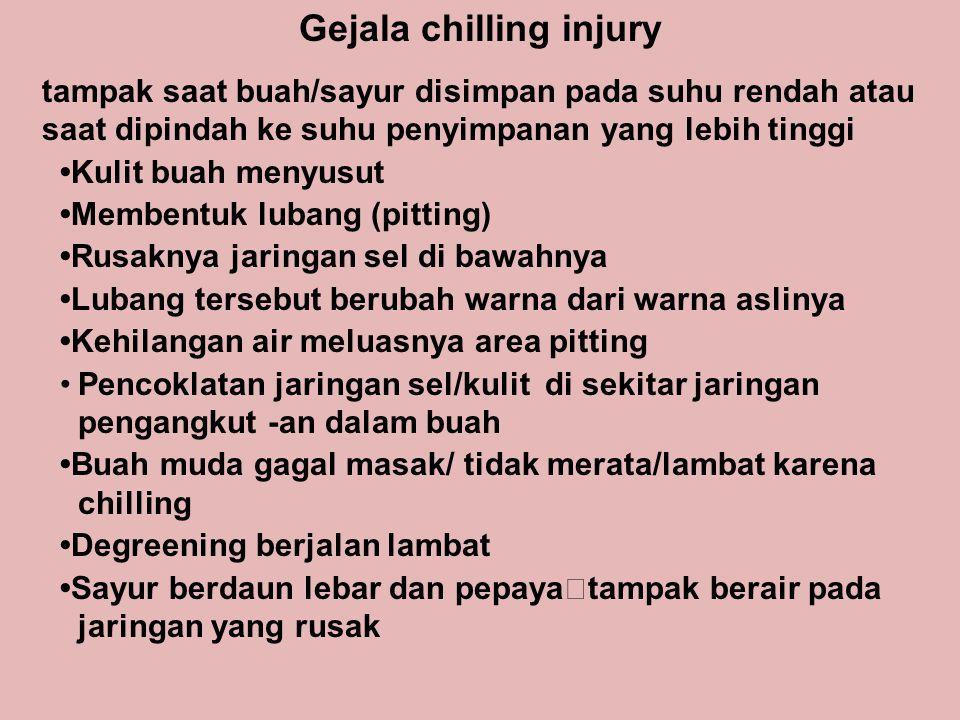 Gejala chilling injury