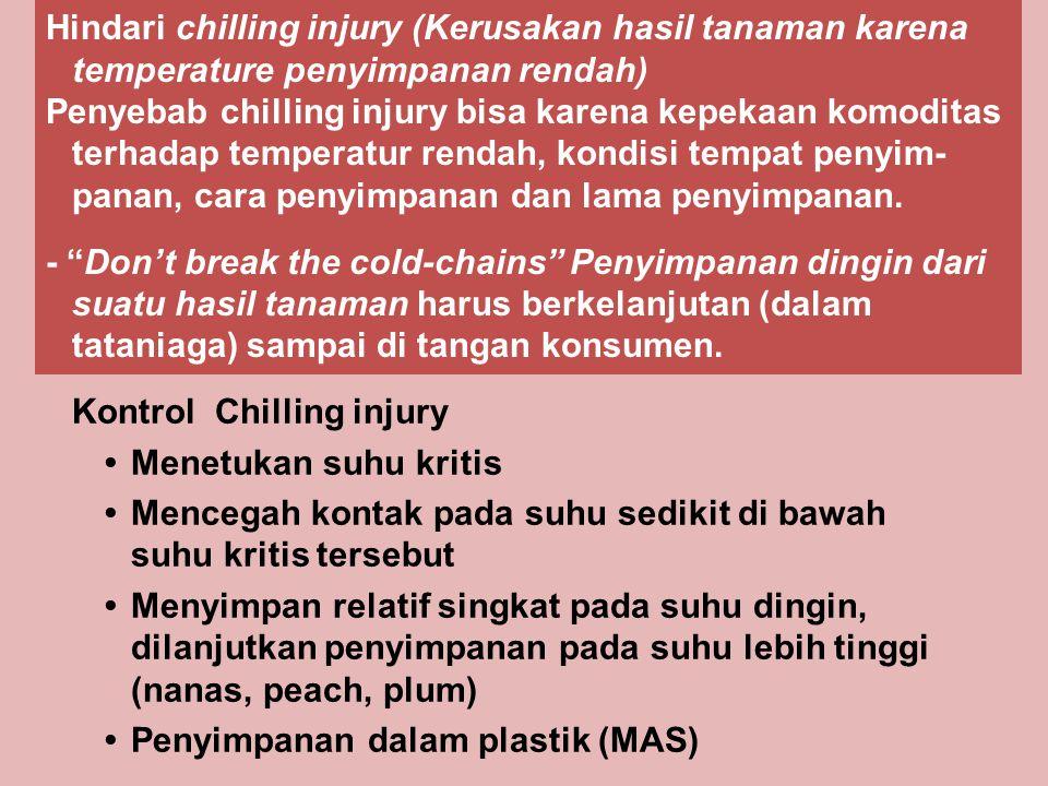 Hindari chilling injury (Kerusakan hasil tanaman karena temperature penyimpanan rendah)
