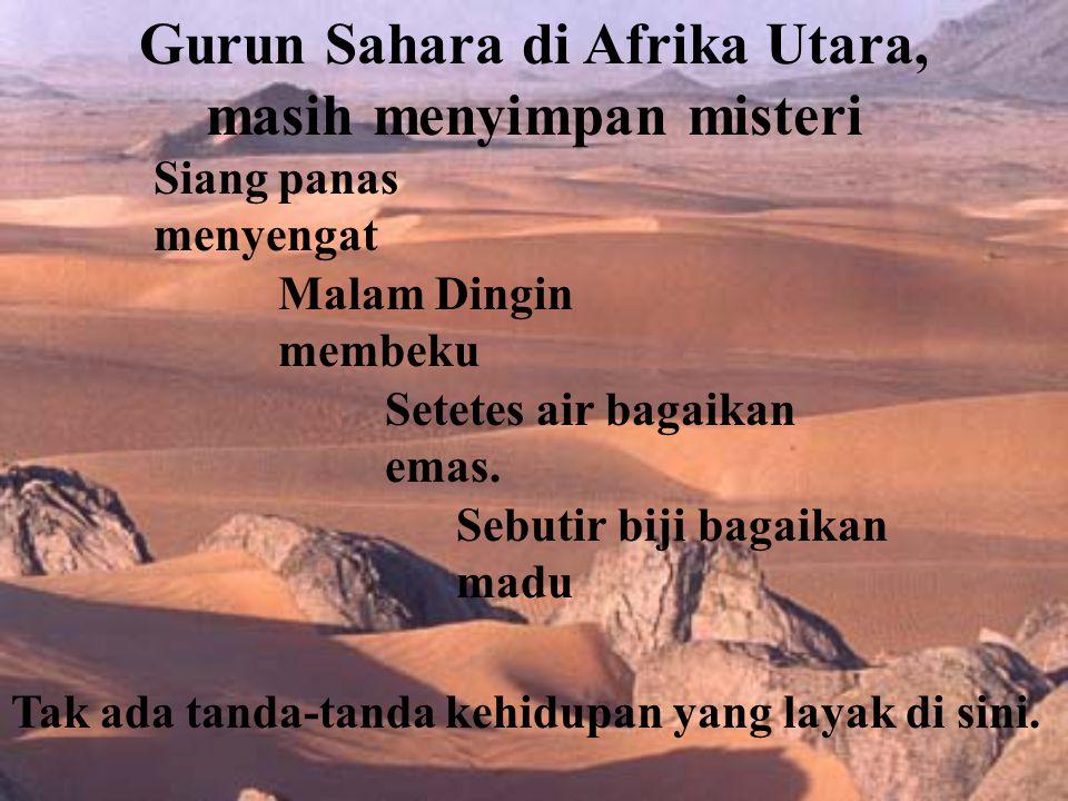 Gurun Sahara di Afrika Utara, masih menyimpan misteri