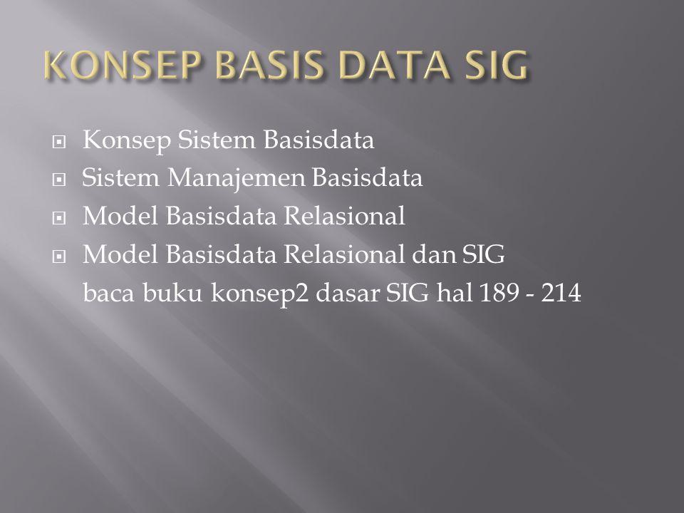 KONSEP BASIS DATA SIG Konsep Sistem Basisdata