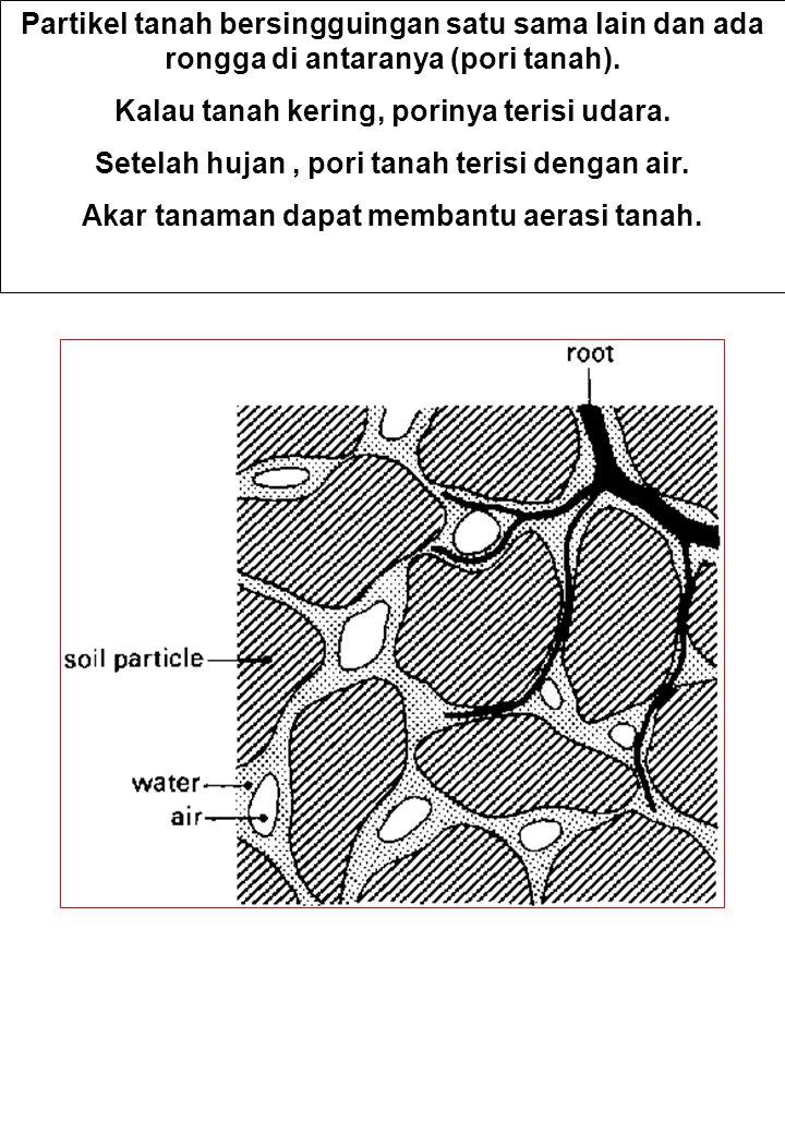 Kalau tanah kering, porinya terisi udara.