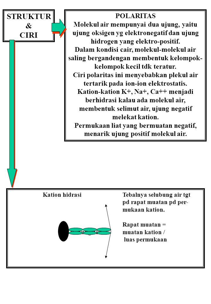 STRUKTUR & CIRI POLARITAS