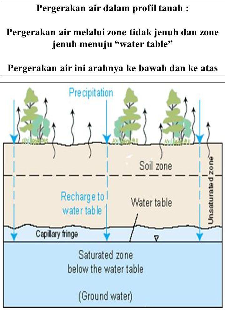Pergerakan air dalam profil tanah :