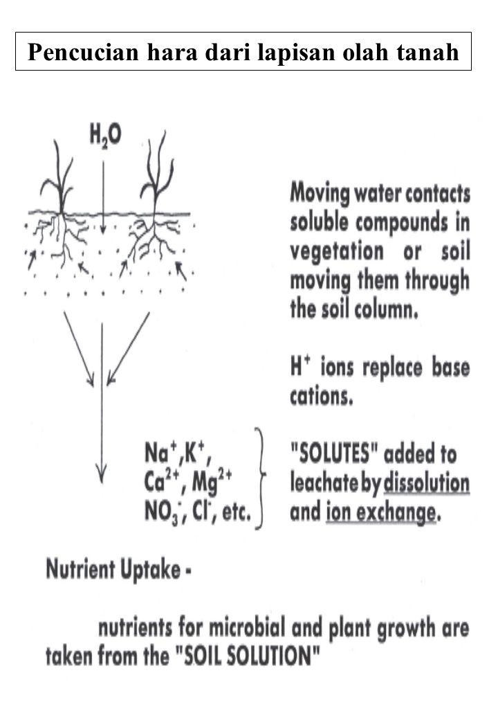 Pencucian hara dari lapisan olah tanah