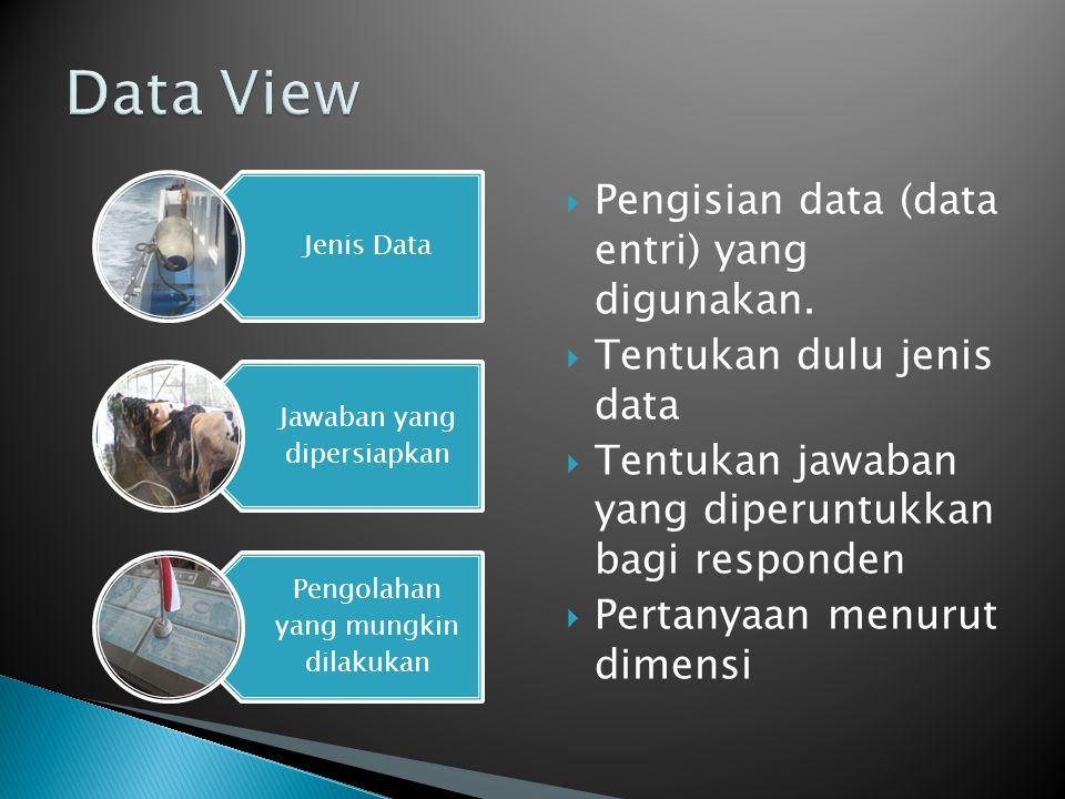 Data View Pengisian data (data entri) yang digunakan.