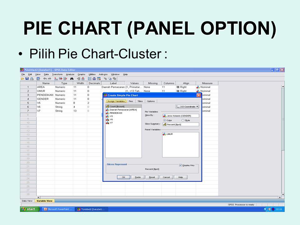 PIE CHART (PANEL OPTION)