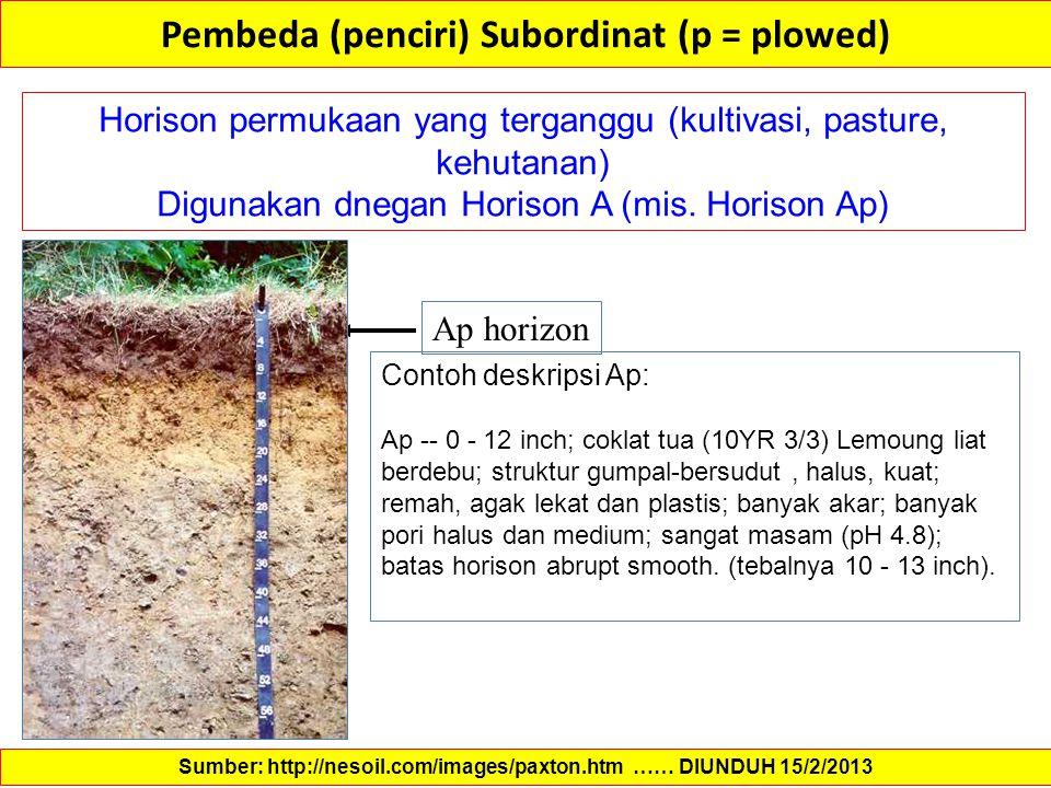 Pembeda (penciri) Subordinat (p = plowed)