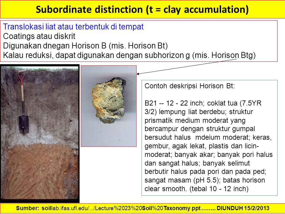 Subordinate distinction (t = clay accumulation)