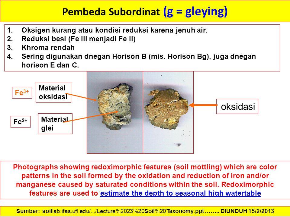 Pembeda Subordinat (g = gleying)