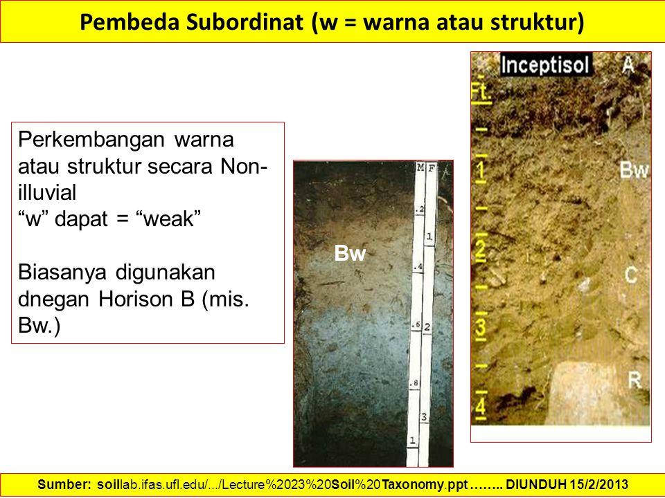 Pembeda Subordinat (w = warna atau struktur)