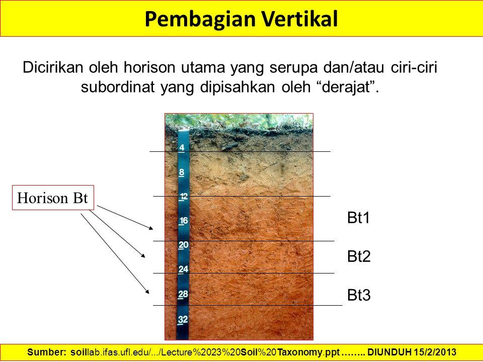 Pembagian Vertikal Dicirikan oleh horison utama yang serupa dan/atau ciri-ciri subordinat yang dipisahkan oleh derajat .