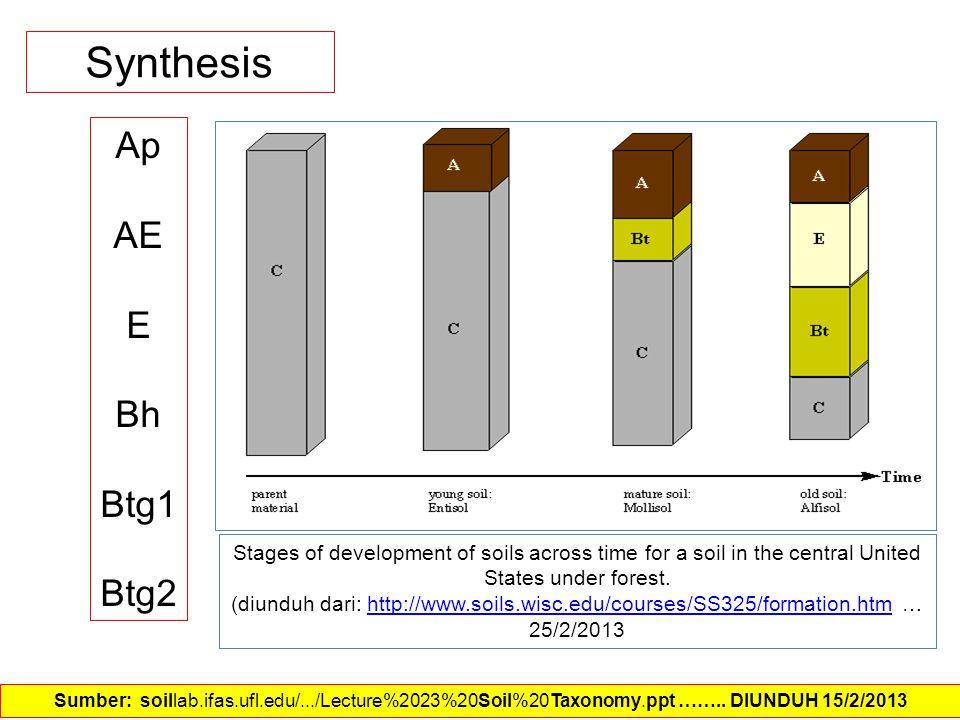 Synthesis Ap AE E Bh Btg1 Btg2