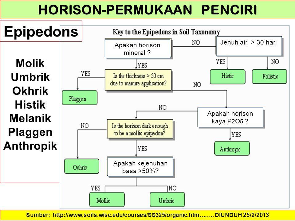 HORISON-PERMUKAAN PENCIRI