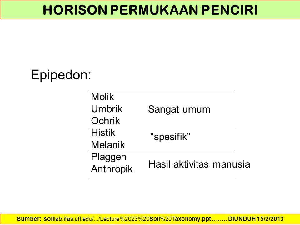 HORISON PERMUKAAN PENCIRI