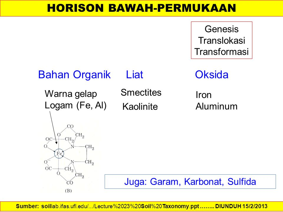 HORISON BAWAH-PERMUKAAN