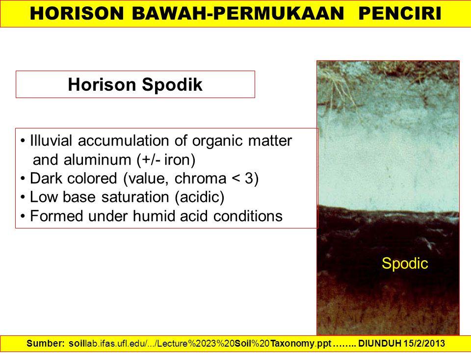 HORISON BAWAH-PERMUKAAN PENCIRI