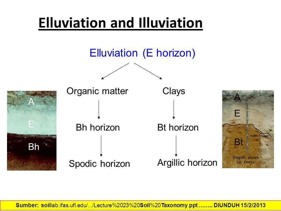 Elluviation and Illuviation