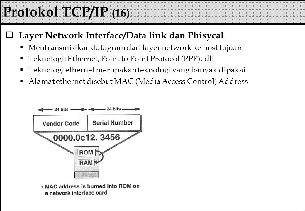 Protokol TCP/IP (16) Layer Network Interface/Data link dan Phisycal