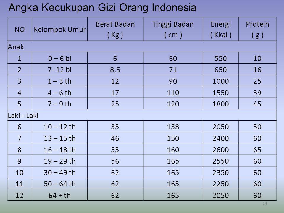 Angka Kecukupan Gizi Orang Indonesia