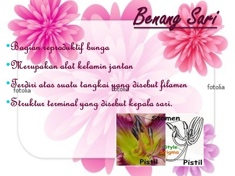 Benang Sari Bagian reproduktif bunga Merupakan alat kelamin jantan