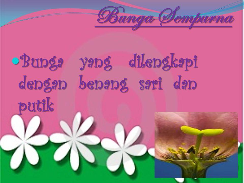 Bunga Sempurna Bunga yang dilengkapi dengan benang sari dan putik
