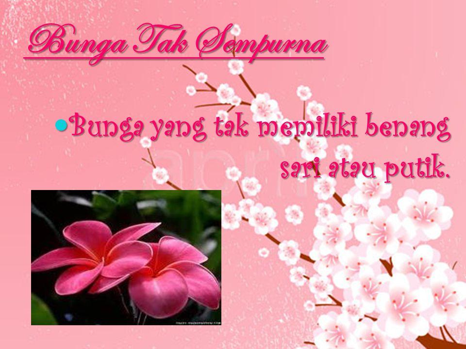 Bunga Tak Sempurna Bunga yang tak memiliki benang sari atau putik.