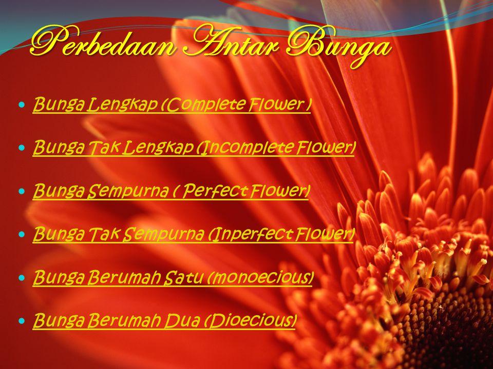Perbedaan Antar Bunga Bunga Lengkap (Complete Flower )