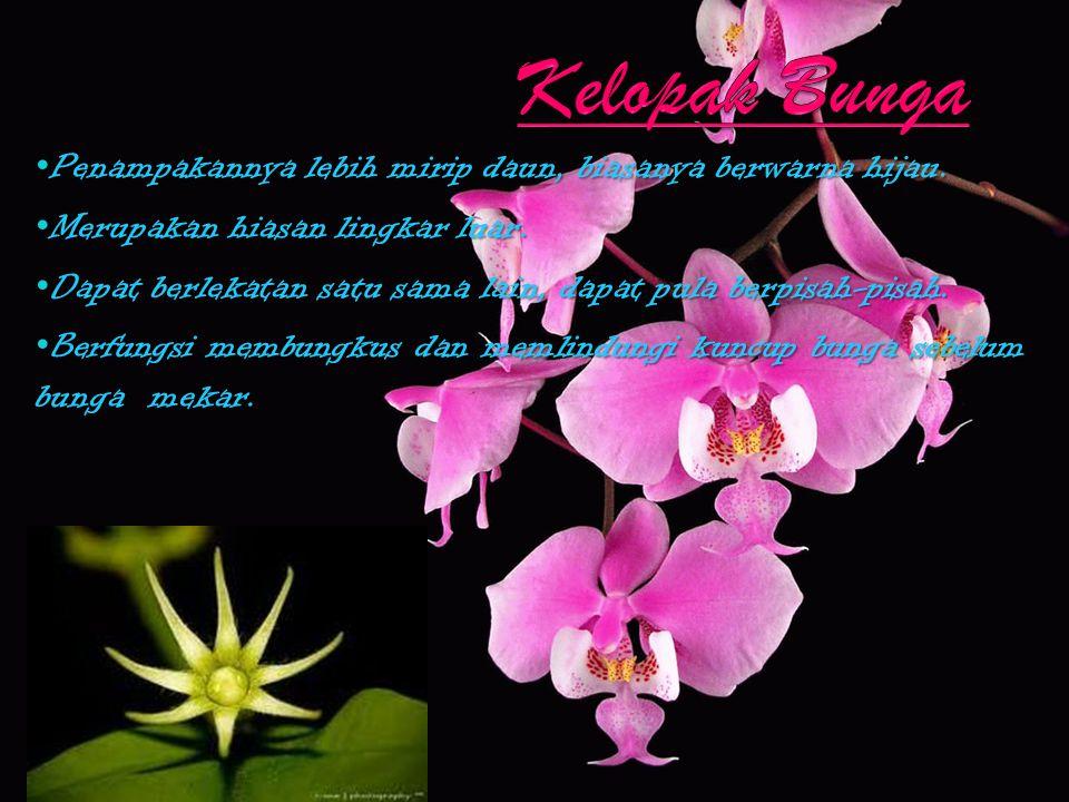 Kelopak Bunga Penampakannya lebih mirip daun, biasanya berwarna hijau.