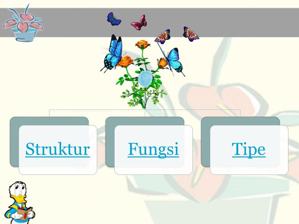 Struktur Fungsi Tipe