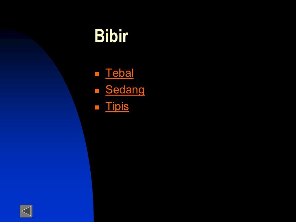 Bibir Tebal Sedang Tipis